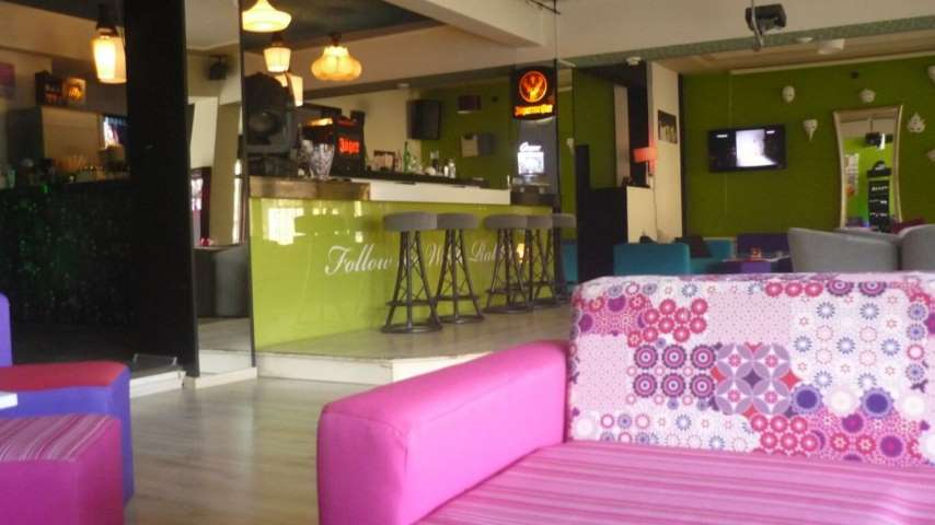 White Rabbit Crazy Cafe – Cafenea Sibiu – Transfagarasan.travel