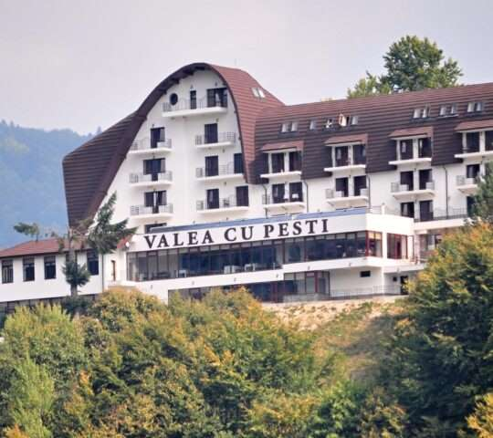 Restaurant Hotel Valea Cu pesti